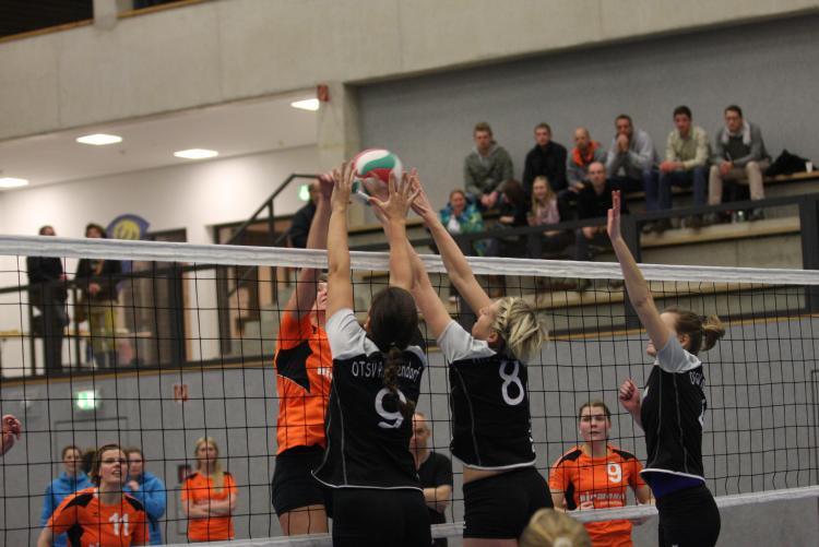 minden volleyball
